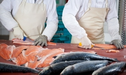 view of two men filleting fish to represent J&E Hall's food, beverage and cold storage sector.